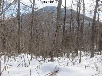 Mt Marshall-Bluff 2015-02--28